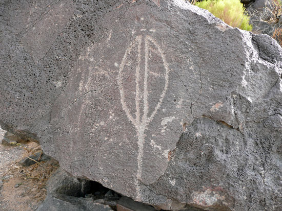 This Petroglyph may at first seem like a spear - in fact, it's a Yucca pod